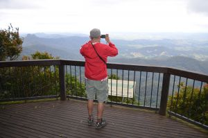 Best of All lookout track Springbrook National Park - Melbourne Tourism