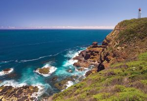 Bushrangers Bay Walking Track - Melbourne Tourism