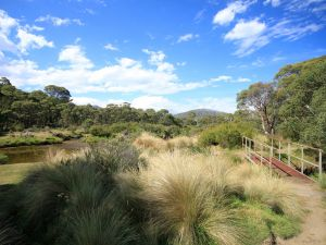 Bullocks walking track - Melbourne Tourism