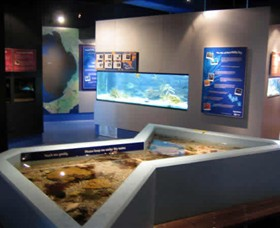 Marine and Freshwater Discovery Centre - Melbourne Tourism