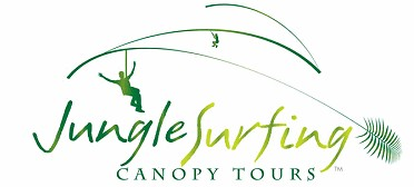 Jungle Surfing Canopy Tours and Jungle Adventures Nightwalks - Melbourne Tourism