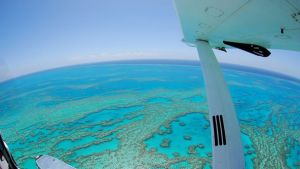 Air Whitsunday Day Tours - Melbourne Tourism