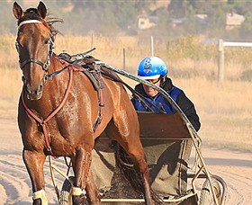 Ballarat  District Trotting Club - Melbourne Tourism