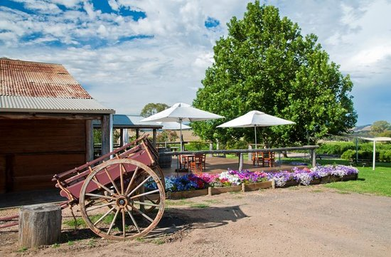 Gracebrook Wines - Melbourne Tourism