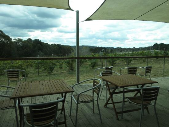 Lark Hill Winery Restaurant - Melbourne Tourism